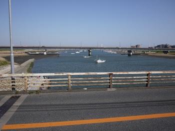 江戸川河口.jpg
