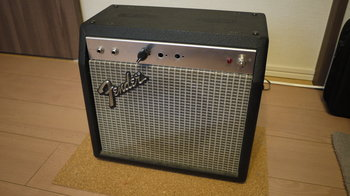 The complete single amp project.jpg